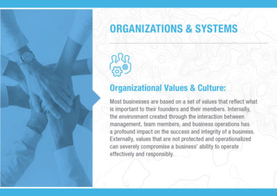 Organizations & Systems: Organizational Values & Culture
