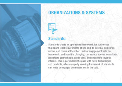 Organizations & Systems: Standards